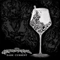 "Cleansing - Dark Current 12"""