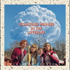 Colour Me Wednesday - Counting Pennies In The Afterlife LP