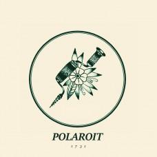 "Polaroit - 1731 12"""